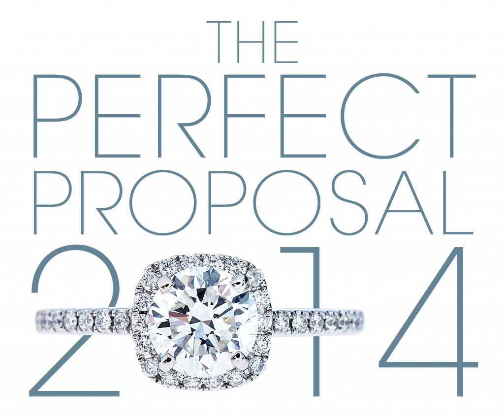 Leo Hamel Perfect Proposal Logo